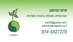 InnaBregman_Page_1