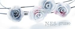 Ness-top