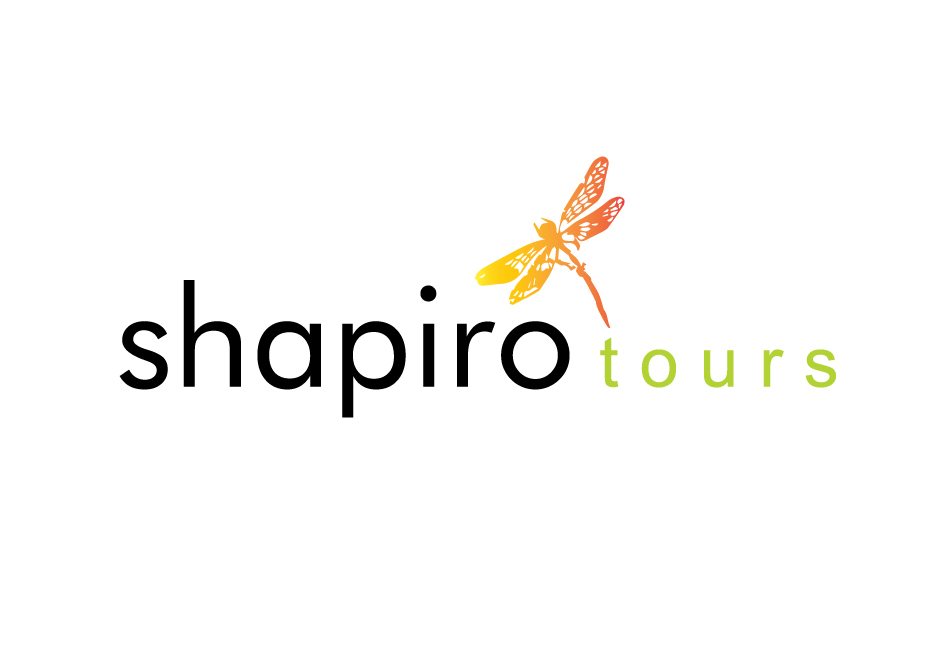 logo-shapirO