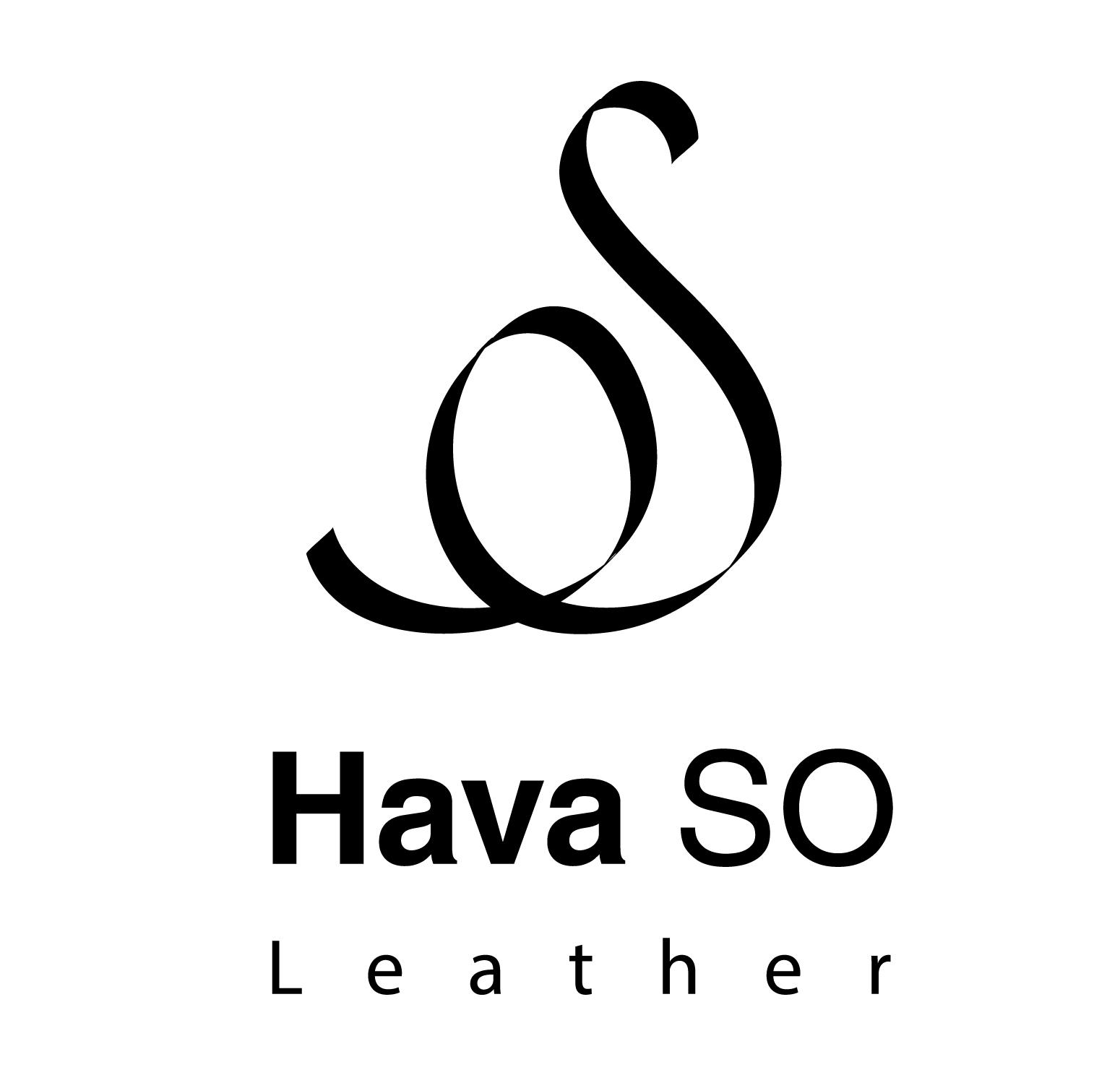 logo Hava OS-web-02