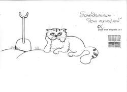 cats009 (2Medium)
