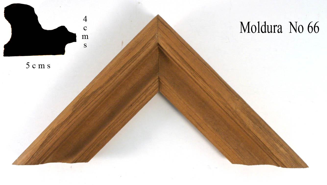 Mold 66
