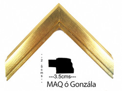 Mold MAQ o Gonzala OH