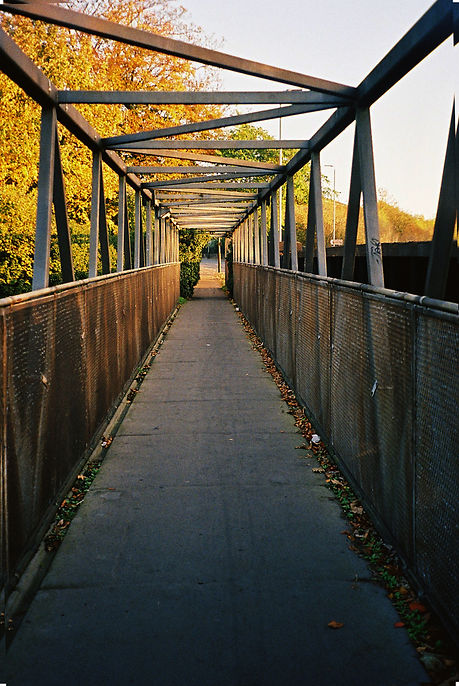 1. Walk the Lines_.jpg