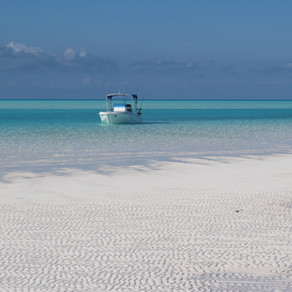 Incredible Sandy Cay Tour (sometimes called White Cay)