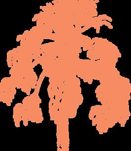 20640301129_b186607887_o cc0 orange.png
