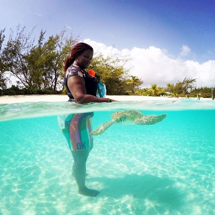 Swim with Turtles | Best Things to Do in Exuma