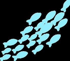 School of Fish - Aquamarine