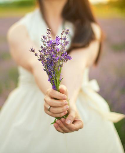 aloe vera lavender, алоое вера за пиене, масло от лавандула, етерично масло лавандула, дотера, doterra