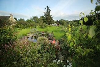 Meadow Garden overview.jpg
