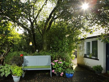 Charity open garden day raises £1,400 for Greenfingers