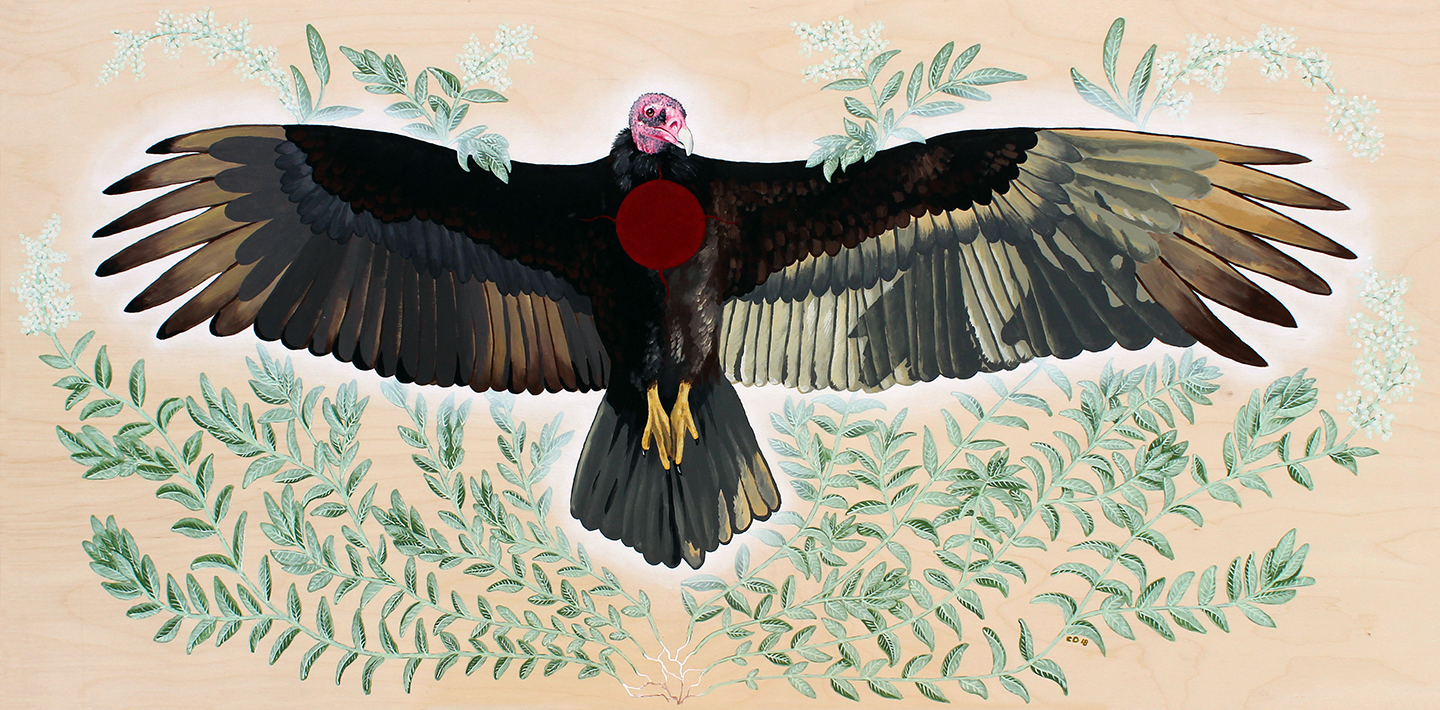 Turkey Vulture Is Honoured
