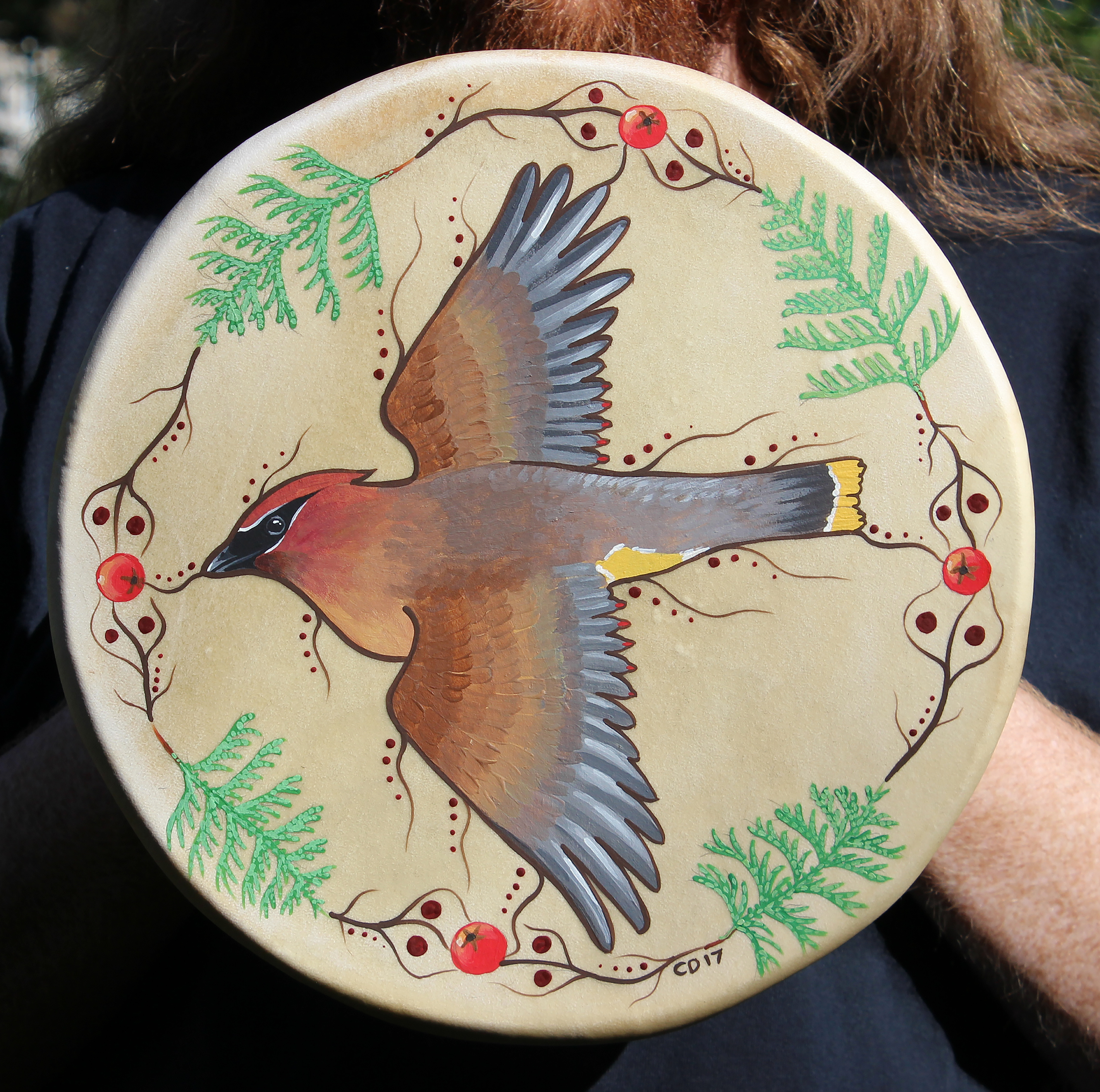 Cedar Waxwing Drum Painting