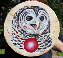 Barred Owl Drum Painting