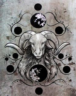 Silver Ram