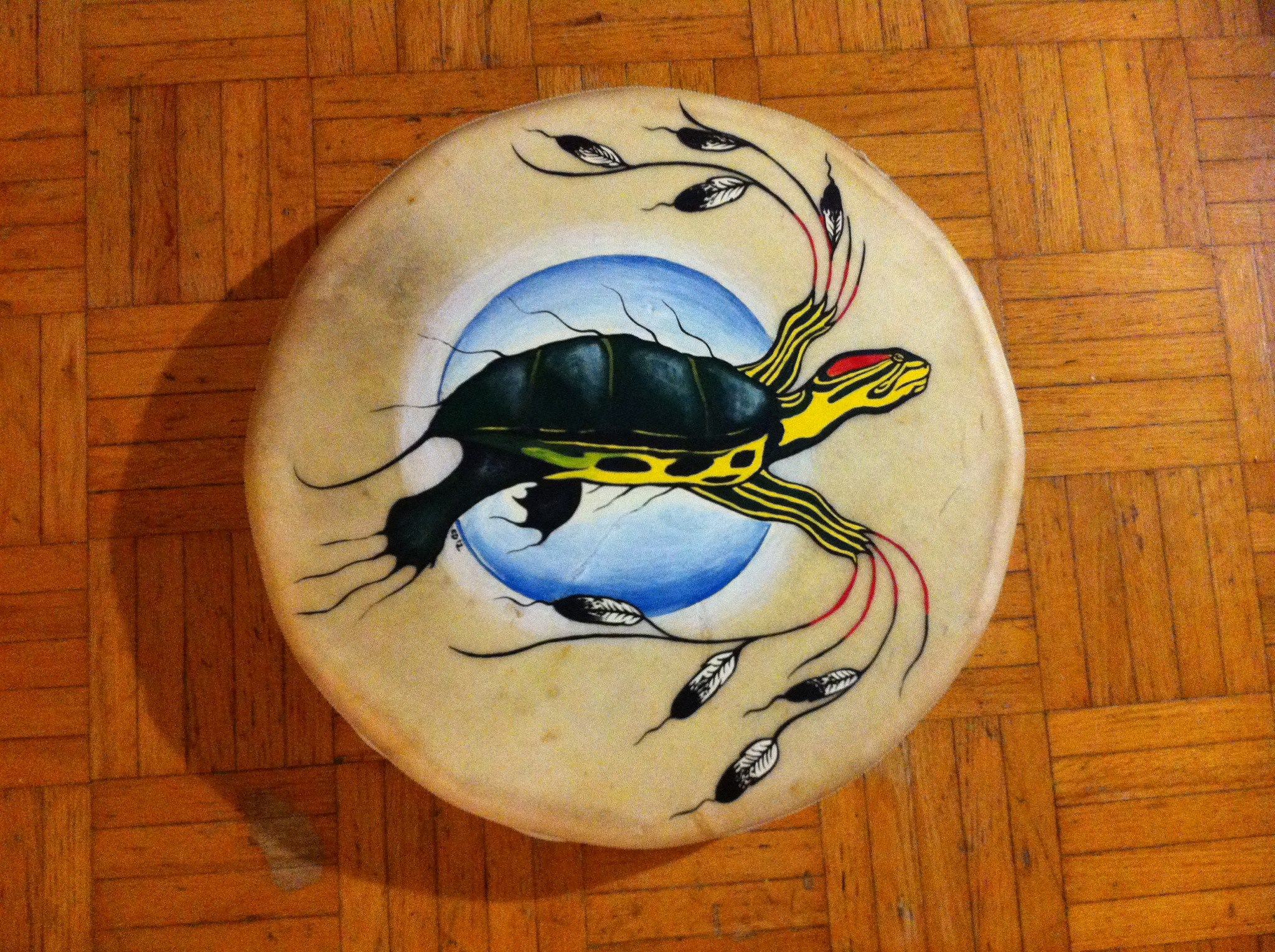 Warrior Turtle Drum