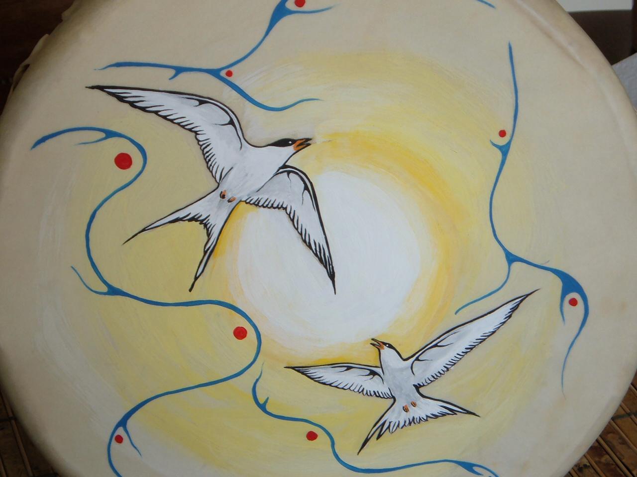 Arctic Tern Drum