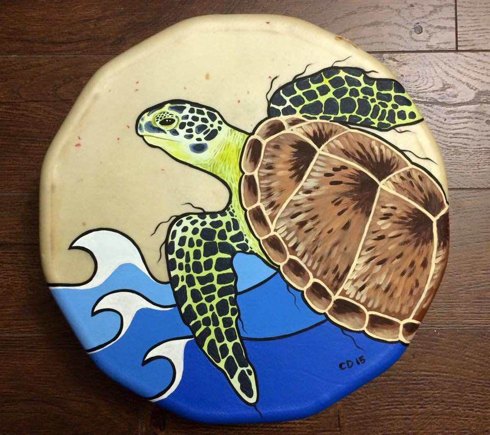 Sea Turtle Drum