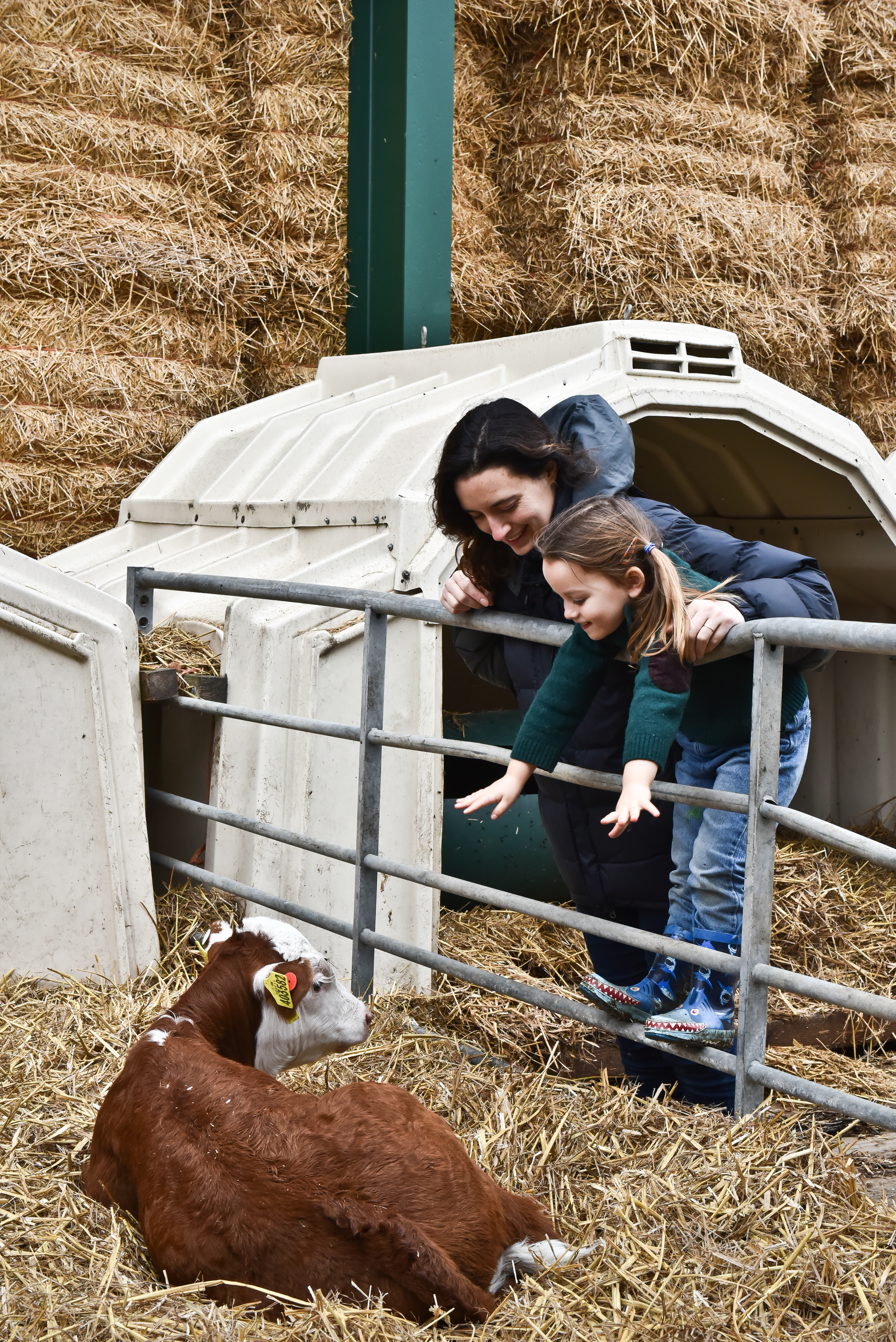 Fen Farm Dairy