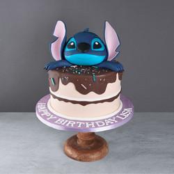 Stitch Torte