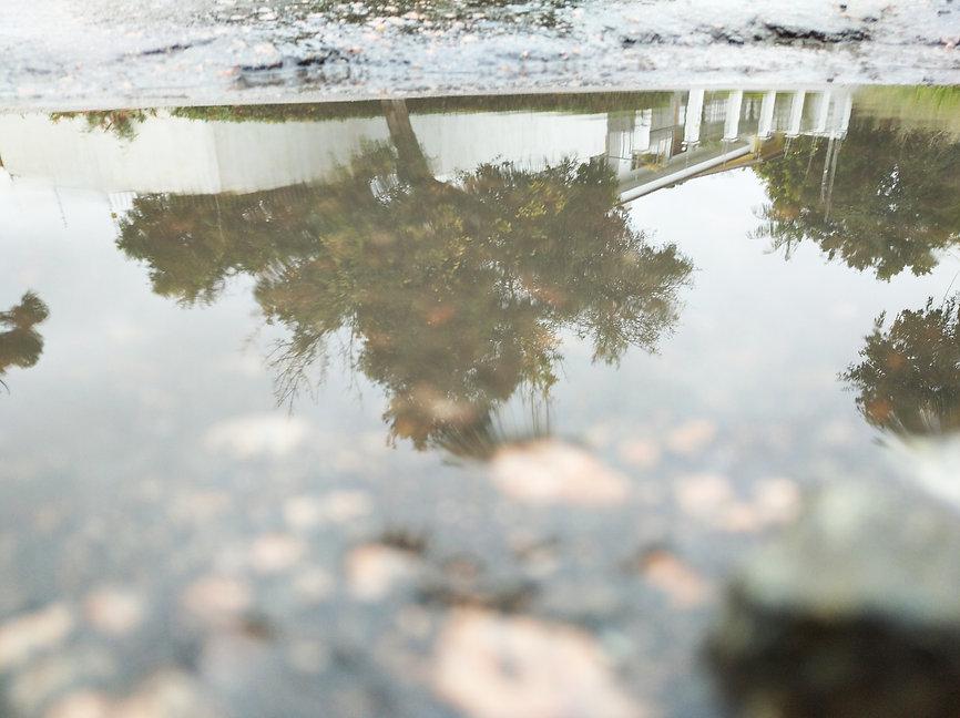 REFLEXOS 1.jpg