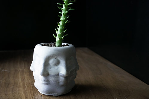 Multi-Face Planter