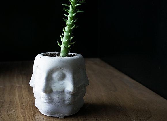 Multi-Face Planter