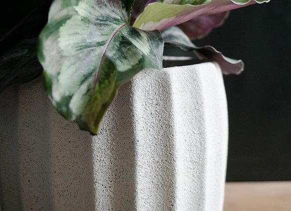 Ribbed Concrete Planter