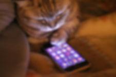 Comprar en Decocat desde un teléfono smartphone