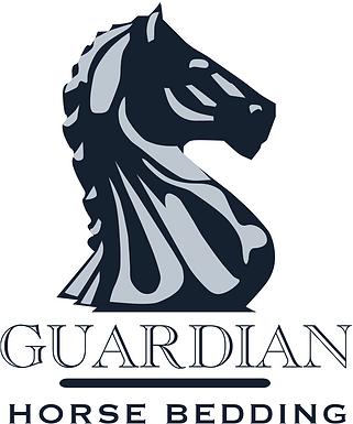 Guardian Logo 2021.png