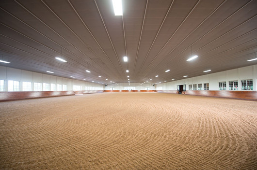 Polo Indoor Arena.jpg