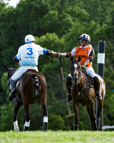 Polo Goal Post and Shaking Hands.JPG