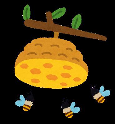 アシナガバチの駆除