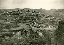 צרעה, פלסטין