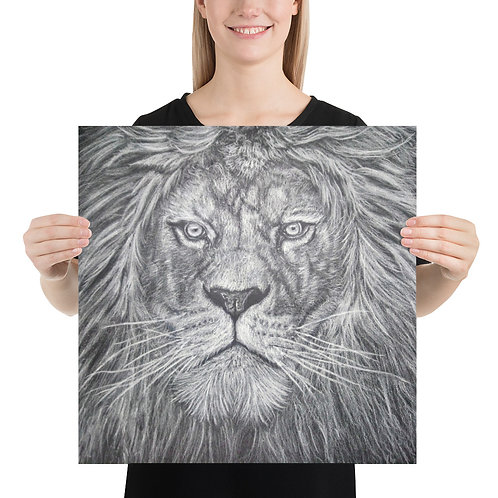 Realistic Lion White Color Pencil Drawing Poster