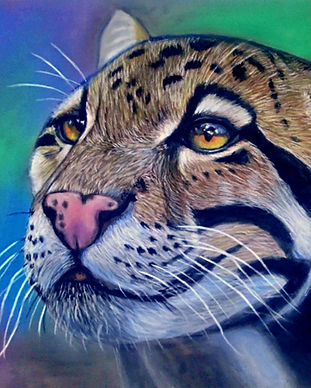 Clouded Leopard Print Design New 04-09-2