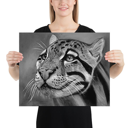 Clouded Leopard Pastel Drawing BW Photo paper poster