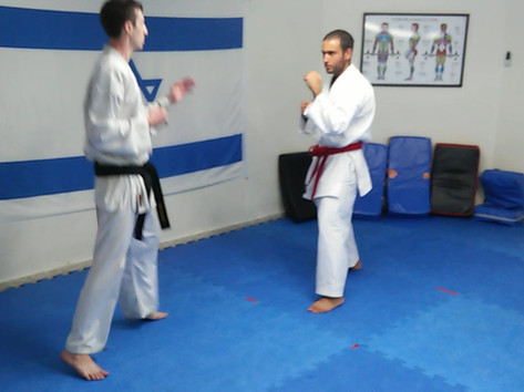 Ohad and Roi sparring excersize