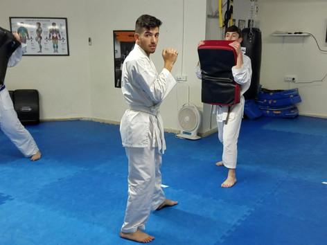 Shield training