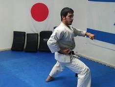 Noam performs Gankaku kata
