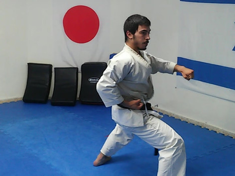 Noam performs Gankaku kata