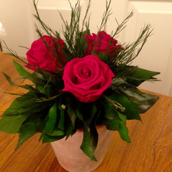 Red roses with ivy in terracotta