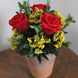 Red/ Yellow terracotta