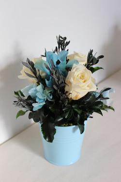 Cream roses in blue pot