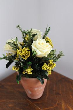 Lemon/yellow terracotta