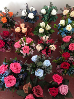 Mixed roses in terracotta pots