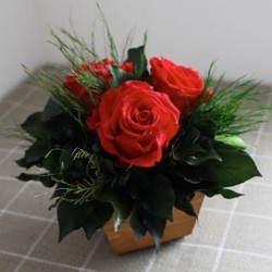 Red roses with ivy in wooden vase