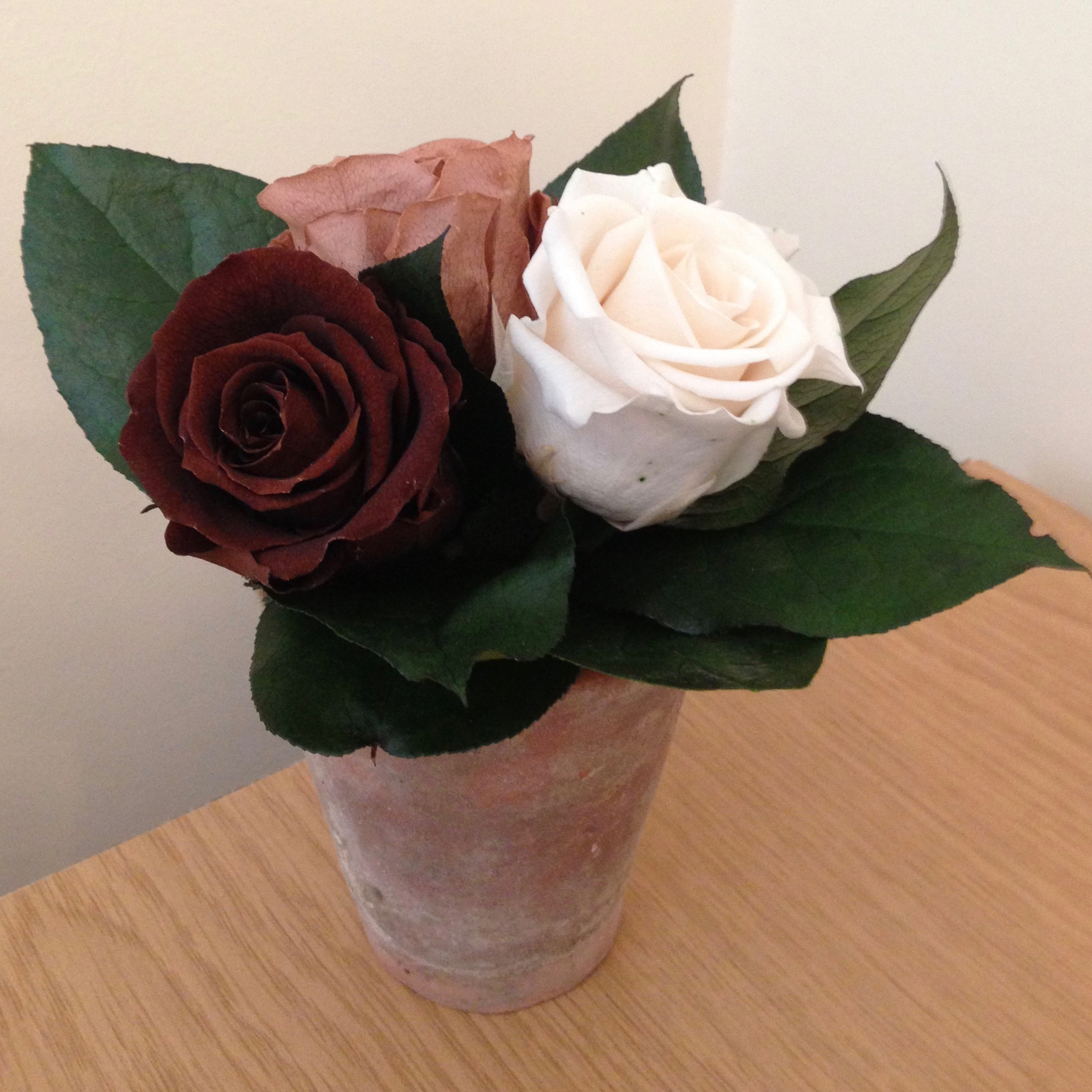 Cream/natural/brown roses and leaves