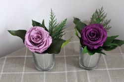 Single Roses lilac & purple