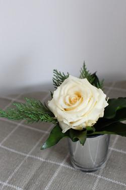 Cream single rose in silver votive